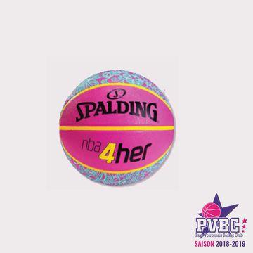 Ballon Spalding bleu et rose T6